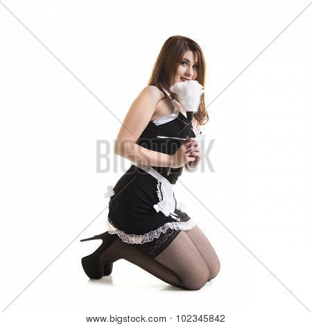 Sexy Maid Holding Cleaning Equipment