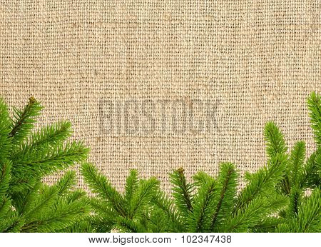 Green Christmas Tree Branch On Linen Texture Background