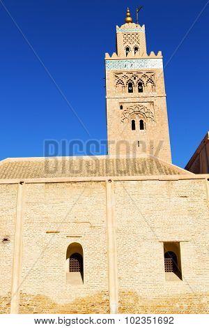 In Maroc Africa  The Blue    Sky