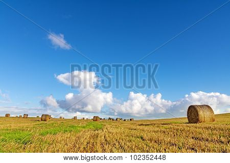 Mown Field With Round Straw Bales Under A Blue Sky With Clouds