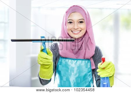 Young Woman Cleaning Windows With Squeegee And Cleaning Spray