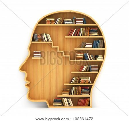 Concept Of Training. Wooden Bookshelf In Form Of Man Head. Science About Human. Psychology. A Human