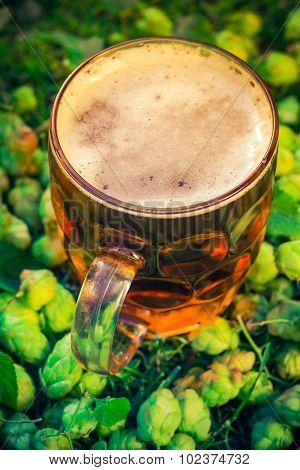 Pint Cold Beer Background Hop Cones