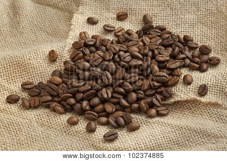 Roasted  Malabar coffee beans from India on a jute bag