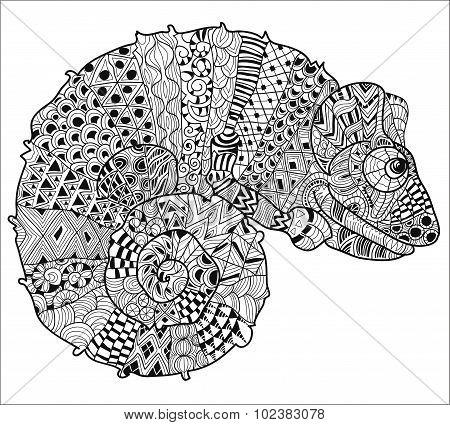 Hand drawn doodle outline chameleon.