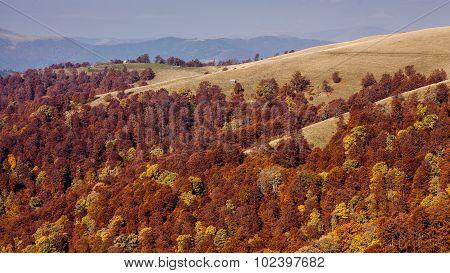Beautiful Carpathian Mountains In Autumn