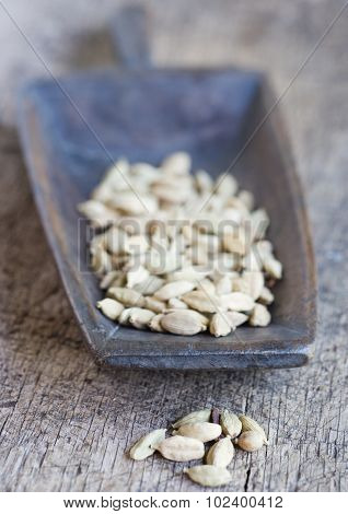 Scoop full of cardamom seeds