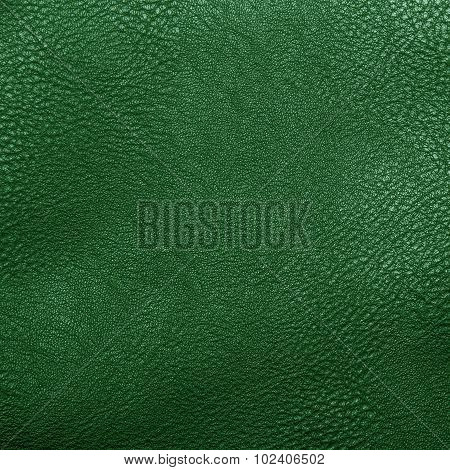green artificial leather