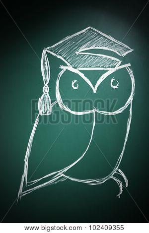 Owl in bachelor hat drawing on blackboard background