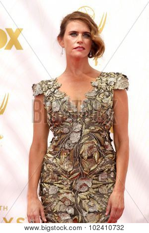 LOS ANGELES - SEP 20:  Amy Landecker at the Primetime Emmy Awards Arrivals at the Microsoft Theater on September 20, 2015 in Los Angeles, CA