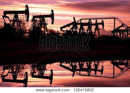 Oil Pumps.