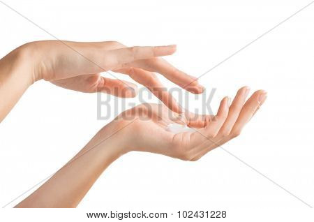 Closeup shot of beautiful female hands holding and applying moisturiser. Beauty woman's hand applying cream. Hands isolated on white background