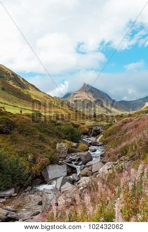 Swiss Alpine Landscape, stream