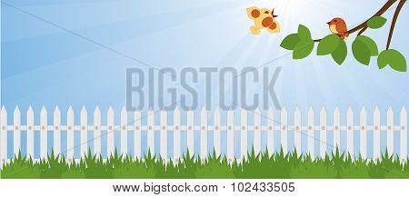 lawn in the garden