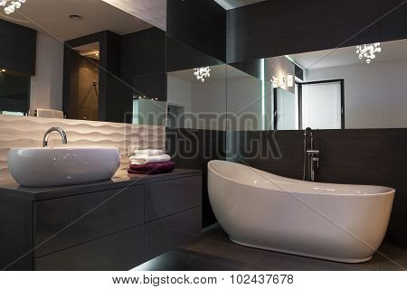 Elegant Fixture In Luxurious Beathroom