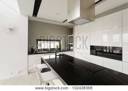 Fancy Black And White Kitchen