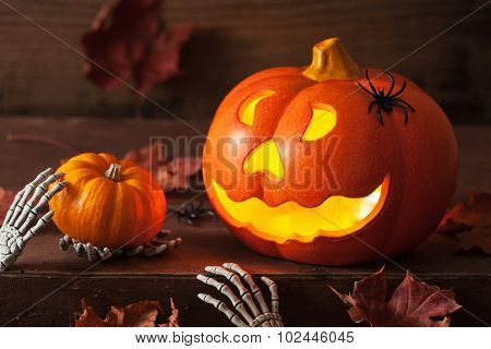 halloween Jack O Lantern pumpkin spiders leaves
