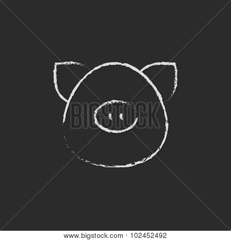 Pig head hand drawn in chalk on a blackboard vector white icon isolated on a black background.