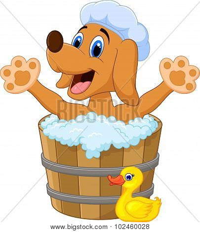 Cartoon Dog bathing in the Dog bathing