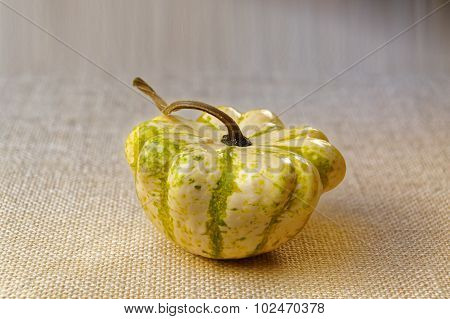 Decorative Pumpkins For Festive Table Decoration