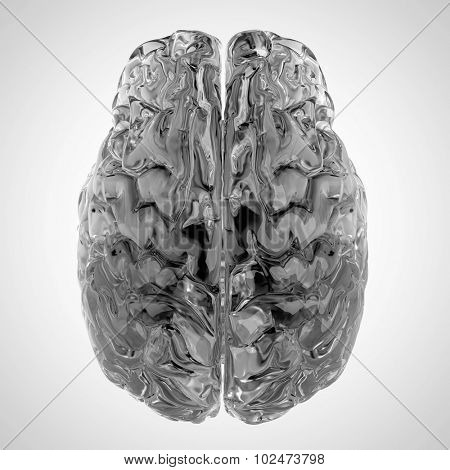 medically accurate illustration of a glas brain