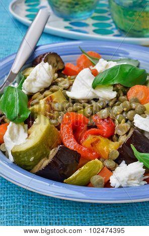 Summer Eggplant lentil salad