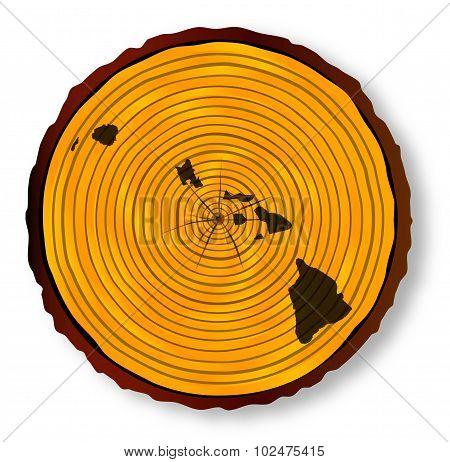 Hawaii Map On Timber