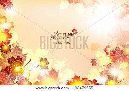 Vector illustration of bright Sunny autumn background with falli