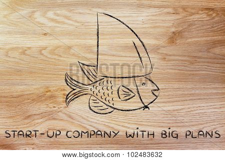 Small Fish Wearing A Fake Shark Fin, Start-up Business With Big Plans