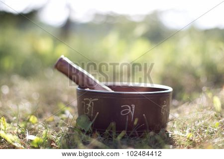 Solar Tibetan singing bowl on grass