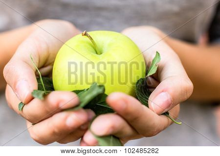 Green apple with leaves in their hands.