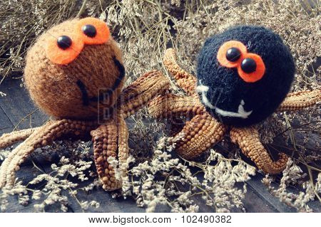Halloween Background, Handmade, Pumpkin, Spider, October