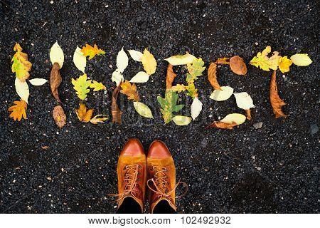 autumn fall season starts on the street