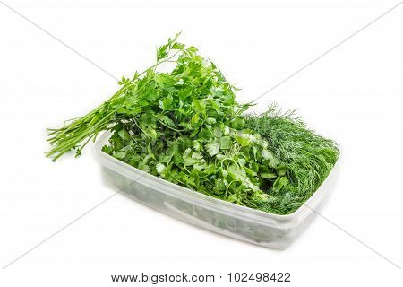 Plastic Tray With Coriander And Dill And Bunch Of Parsley