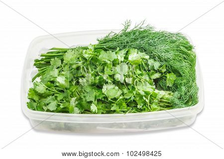 Plastic Tray With Coriander And Dill