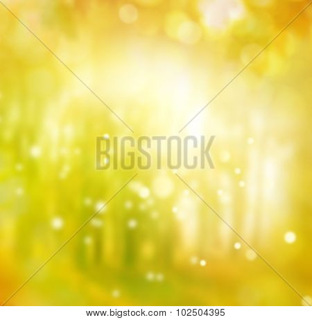 Abstract blurred autumn background.