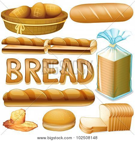 Bread in various kinds illustration