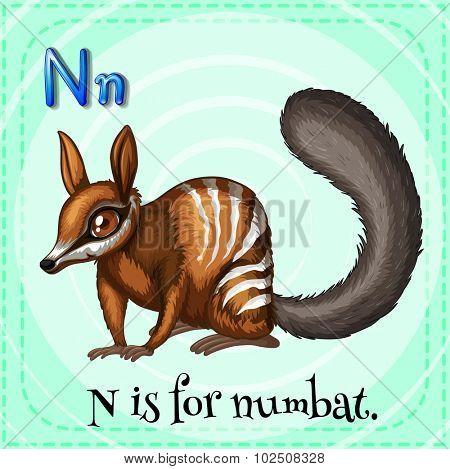 Flashcard letter N is for numbat illustration