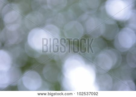 Natural Bokeh,blurred bokeh