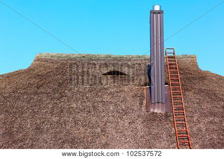 Details of the thatched roof with ladder on it