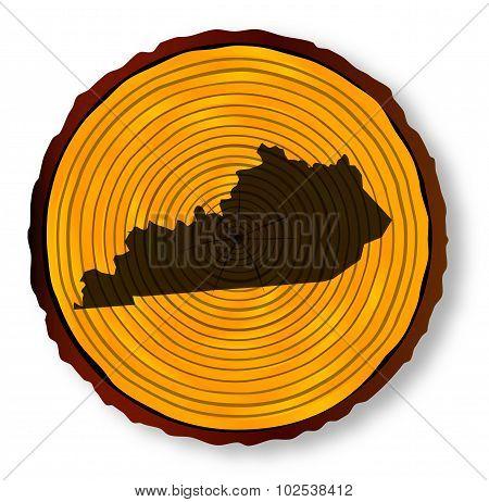 Kentucky Map On Timber