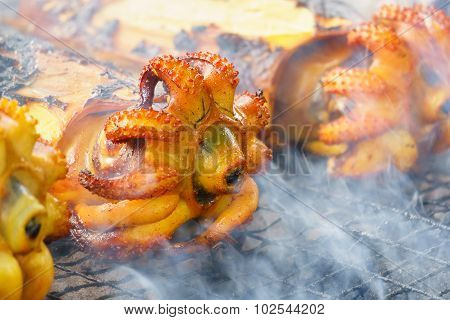 Cuttlefish grilled