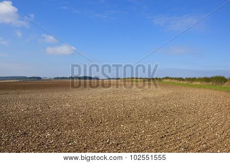 Chalky Plowed Soil