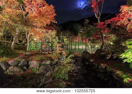Superb View, Fall Color At Eikando Zenrinji, Japan In The Autumn