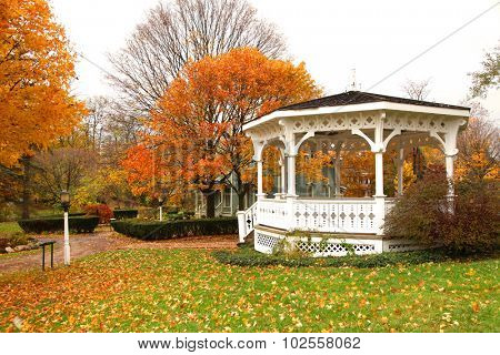 White Gazebo and autumn trees in the park