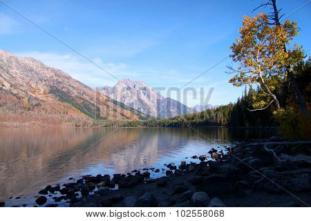 Jenny lake landscape in Grand Tetons national park