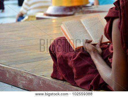 Yangon, Myanmar - November 30: Shwedagon Pagoda March 9 2015 In Yangon. Monks Reading Book.