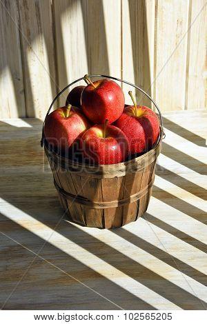 apple basket in shadow stripes