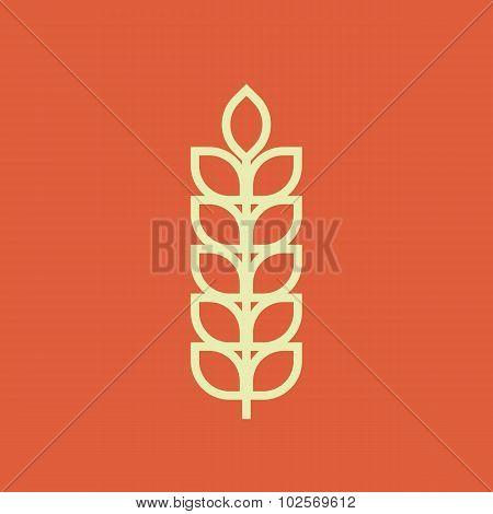 Wheat outline icon, modern minimal flat design style, vector illustration