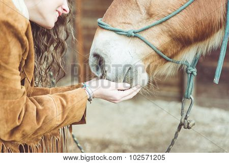 Woman Petting Her Horse. Close Up On Hands And Horse Mouth